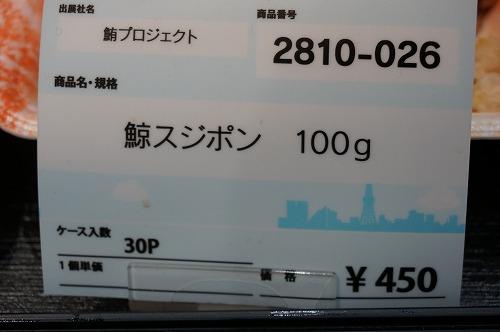 DSC04732.jpg