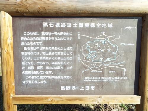 DSCF4630.jpg