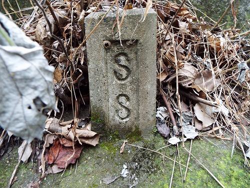DSCF5283.jpg