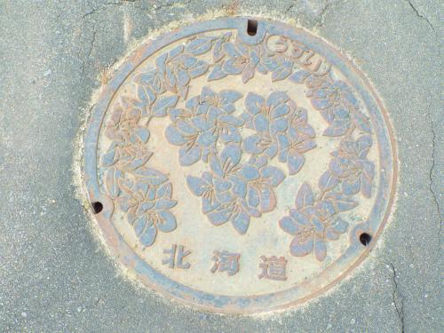 DSCF9461.jpg