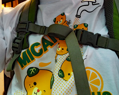 みきゃんTシャツ.jpg