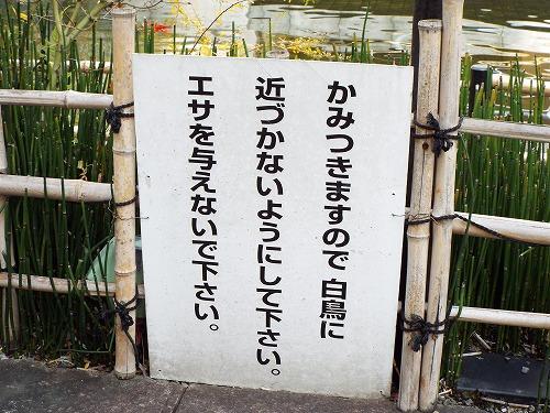 京都路地裏探索オフ会2015 084.jpg