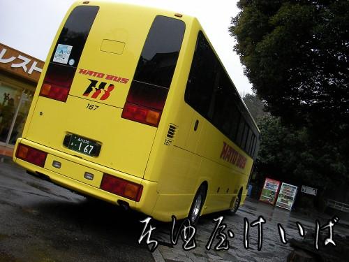 今日の相棒.jpg