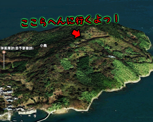 今治・小島・俯瞰図.jpg