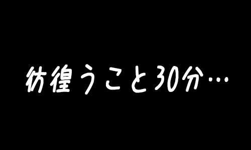 彷徨うこと30分・・・.jpg
