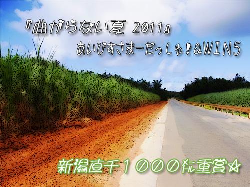 曲がらない夏2011.jpg