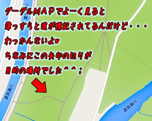 渡良瀬遊水地よく見ると道標記.jpg