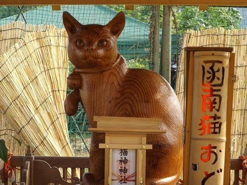 猫おどり 074.jpg