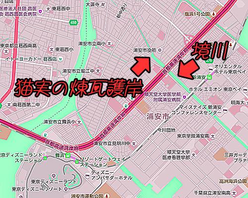 猫実の煉瓦護岸.jpg