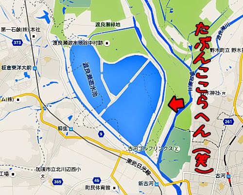 谷中湖・渡良瀬遊水地.jpg