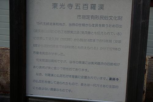 DSC01313.jpg