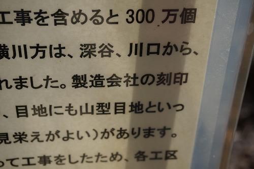 DSC03627.jpg