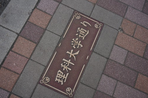 DSC08770.jpg